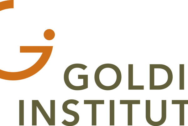 Goldin Institute grassroots non-profit